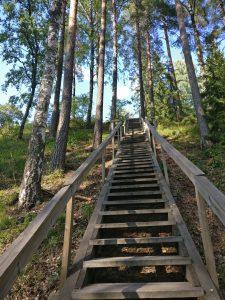Luontopolun portaat