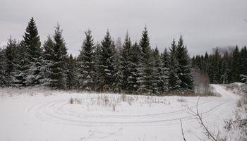 Metsätien päässä on hyvä olla kunnon kääntöpaikka puutavara-autolle.